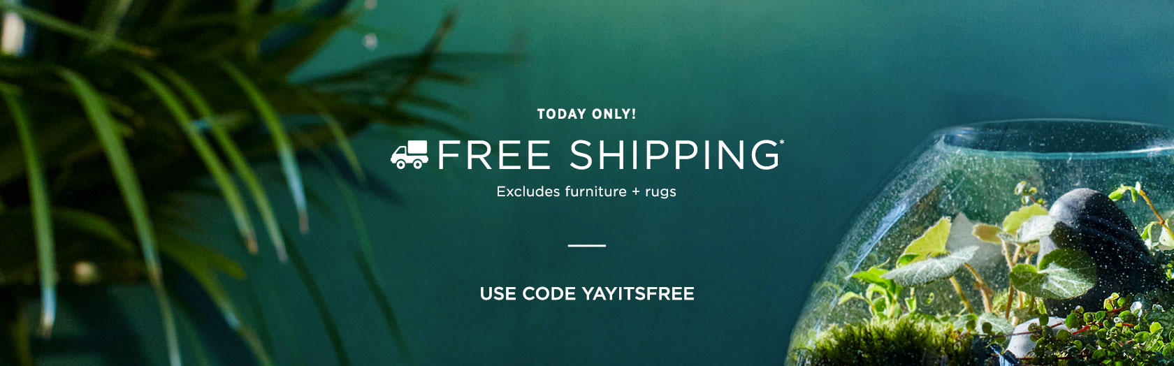 Today Only! Free Shipping - Use Code YAYITSFREE