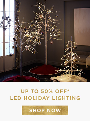 Up To 50% Off LED Holiday Lighting