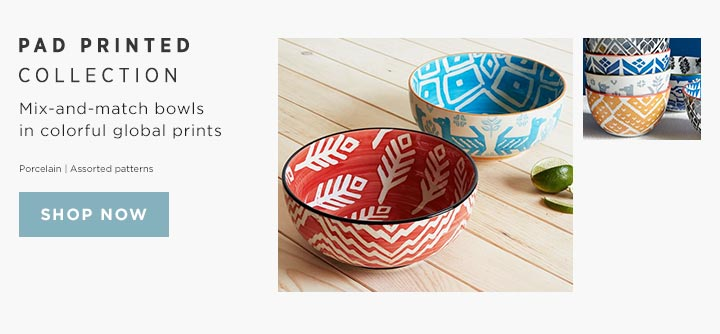 Pad Printed Collection - Mix-and-match bowls in colorful global prints