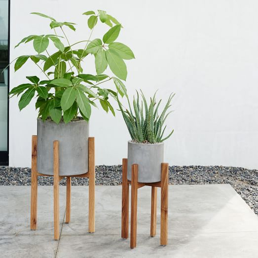 Modern Wood Leg Standing Planter Cylinder West Elm