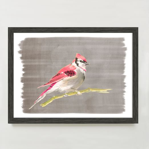WE Print Collection, Pink Jay