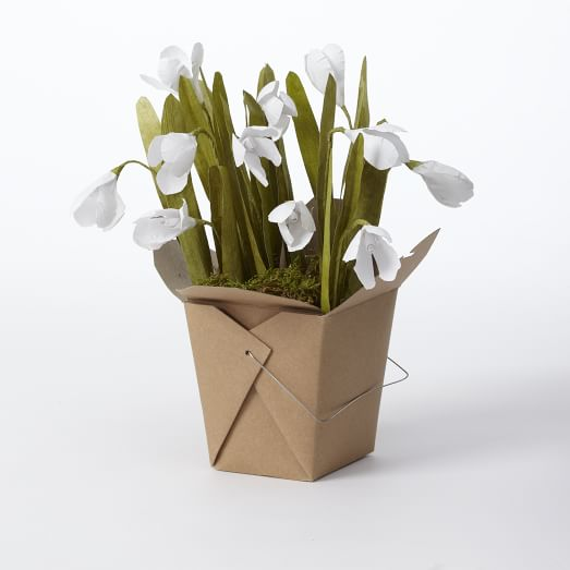 Paper Flower Collection, Snow Drop