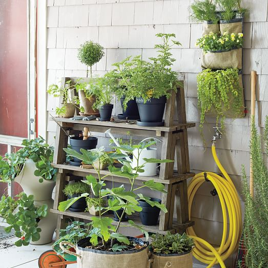 Stackable Wood Plant Stand West Elm