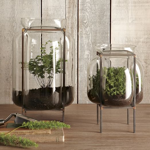 Glass Terrarium With Metal Stand, Small