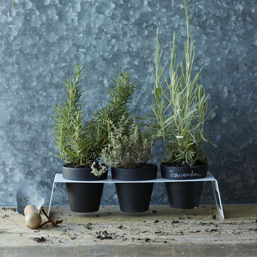 Chalkboard Herb Planter Stand Set