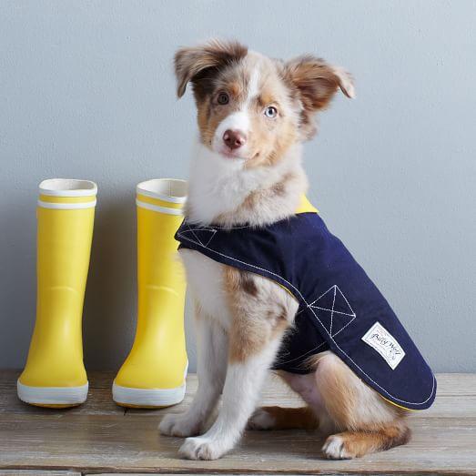 Billy Wolf Rain Jacket, Extra Small, Blue/Yellow