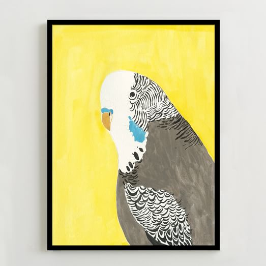 Framed Print, Parrot Portrait