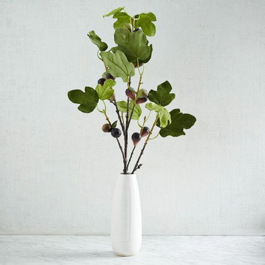 Fig Branch, 45