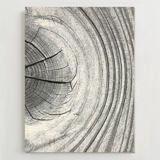 Framed Print, Old Wood II, 29