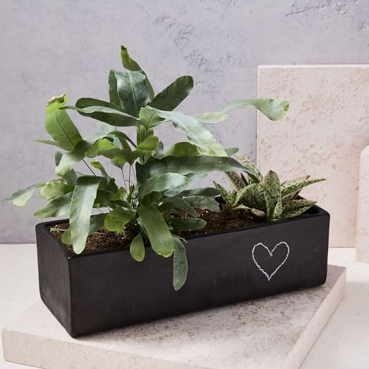 Modern Chalkboard Planter, Windowsill