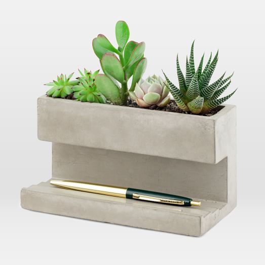 Planter Office Accessories, Large